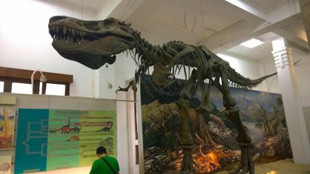 Trex di Museum Geologi Bandung