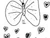 butterfly-cinta
