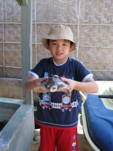 turtle park - pegang penyu